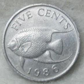 Любимая рыбка